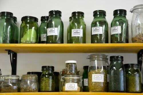 Lili's Herbarium